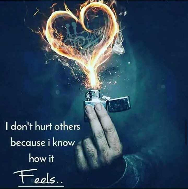 Motivatinal Quotes - I don ' t hurt others because i know how it Feels . . - ShareChat