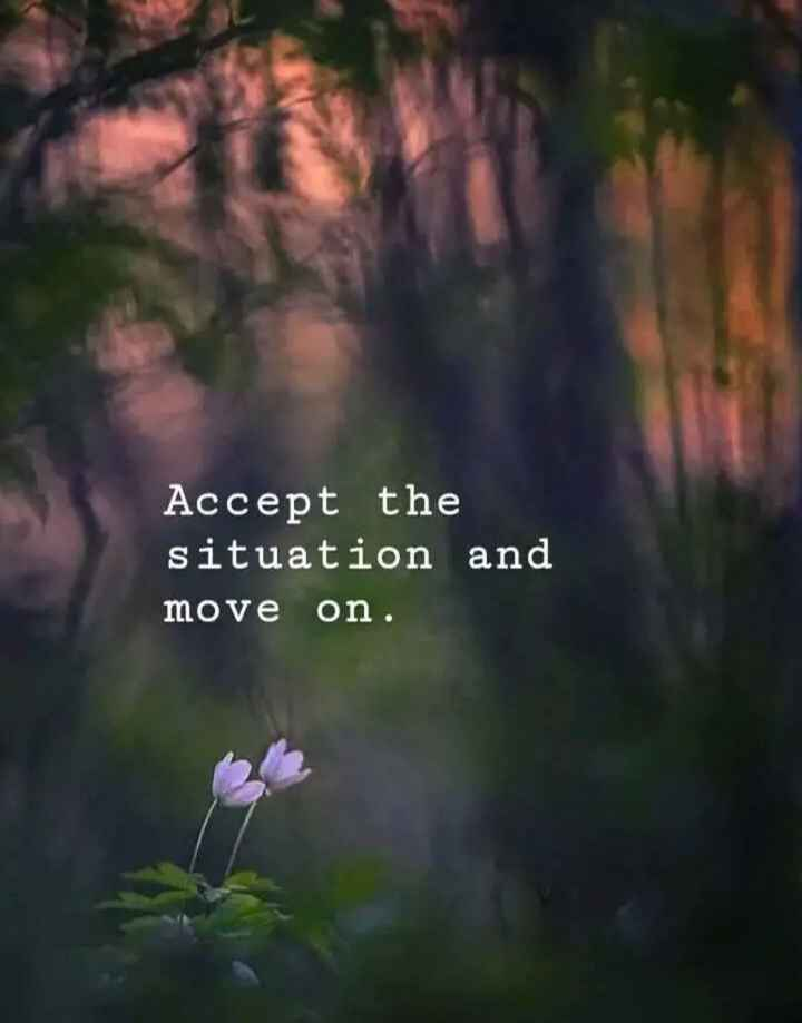 Motivation Status - Accept the situation and move on . - ShareChat