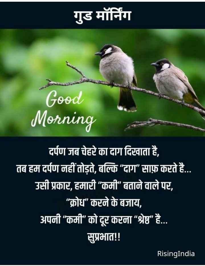 """👍 Motivational Video✌ - गुड मॉर्निंग Good Morning दर्पण जब चेहरे का दाग दिरवाता है , तब हम दर्पण नहीं तोड़ते , बल्कि """" दाग """" साफ़ करते है . . . उसी प्रकार , हमारी """" कमी """" बताने वाले पर , """" क्रोध करने के बजाय , अपनी """" कमी """" को दूर करना """" श्रेष्ठ """" है . . . सुप्रभात ! ! RisingIndia - ShareChat"""