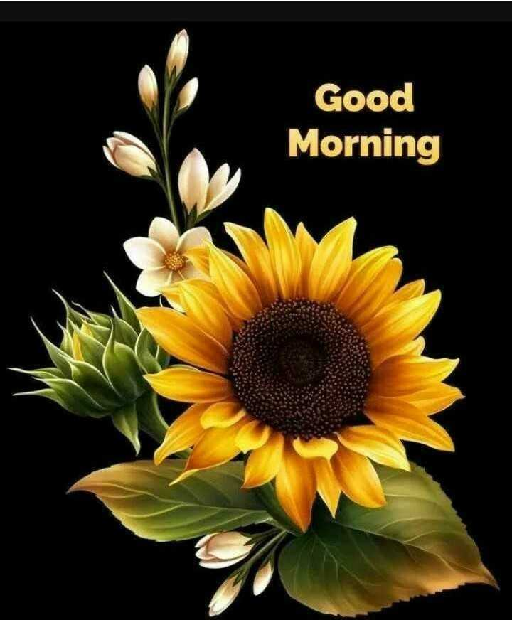 NV কৌতুক - Good Morning - ShareChat
