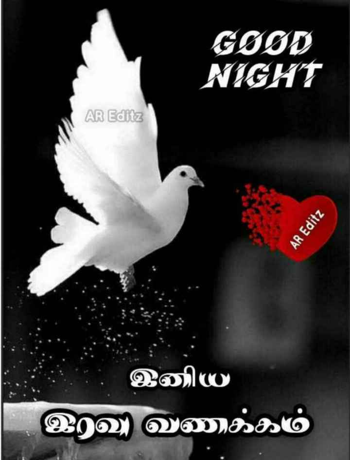 Rajasekar - GOOD NIGHT AR Editz AR Editz இனிய இரவு வணக்கம் - ShareChat