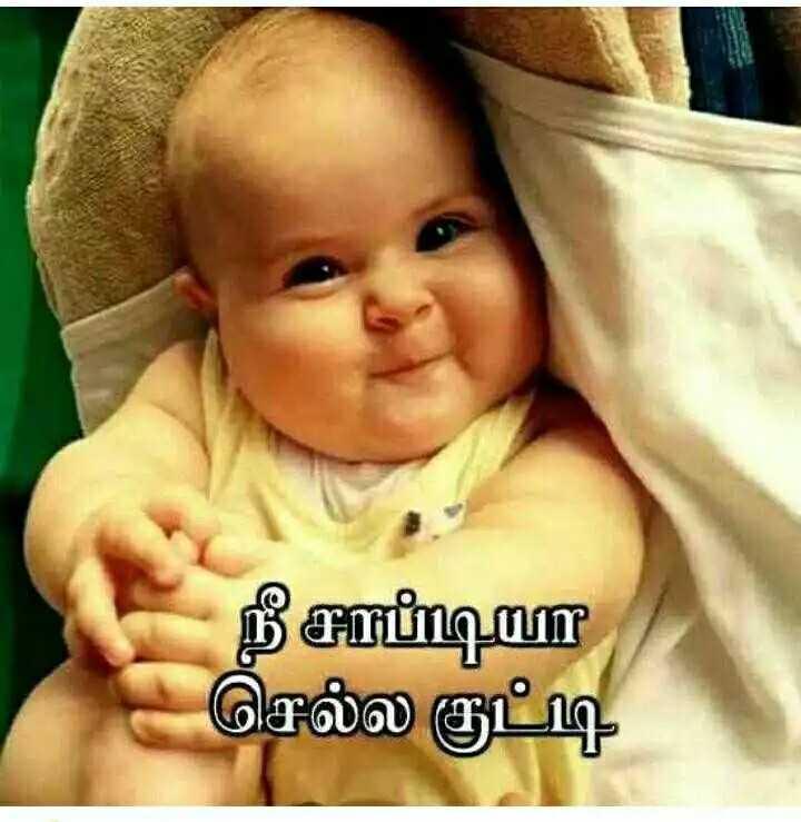 💃Rowdy Baby சேலஞ்ச் - நீ சாப்டியா செல்ல குட்டி - ShareChat