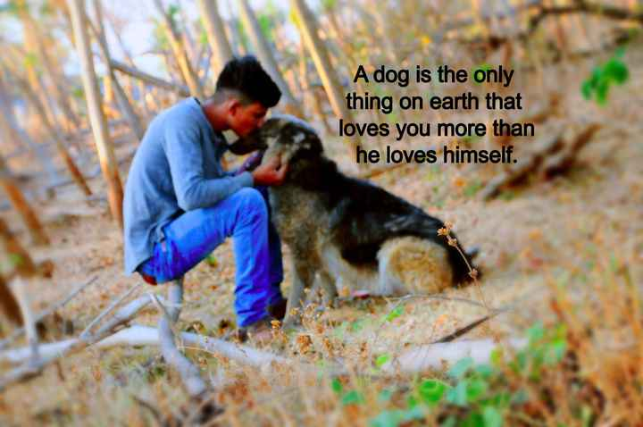 🎼SINGING - A dog is the only thing on earth that loves you more than he loves himself . - ShareChat