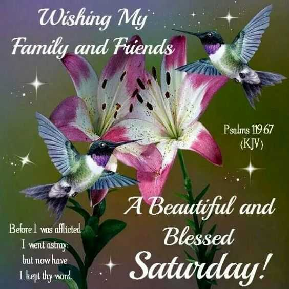 Saturday Motivation - Wishing My Family and Fiends Kaunas Psalms 119 . 67 ( KJV ) Before I was afflicted I went astray but now have I kept thy word A Beautiful and Blessed Saturday ! - ShareChat