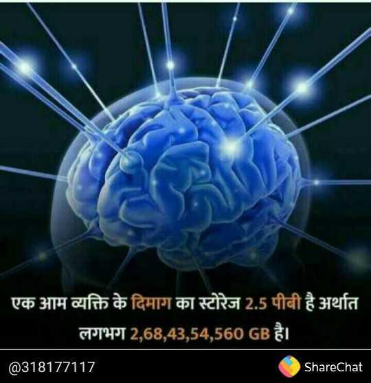 🔬Science - एक आम व्यक्ति के दिमाग का स्टोरेज 2 . 5 पीबी है अर्थात लगभग 2 , 68 , 43 , 54 , 560 GB है । @ 318177117 ShareChat - ShareChat