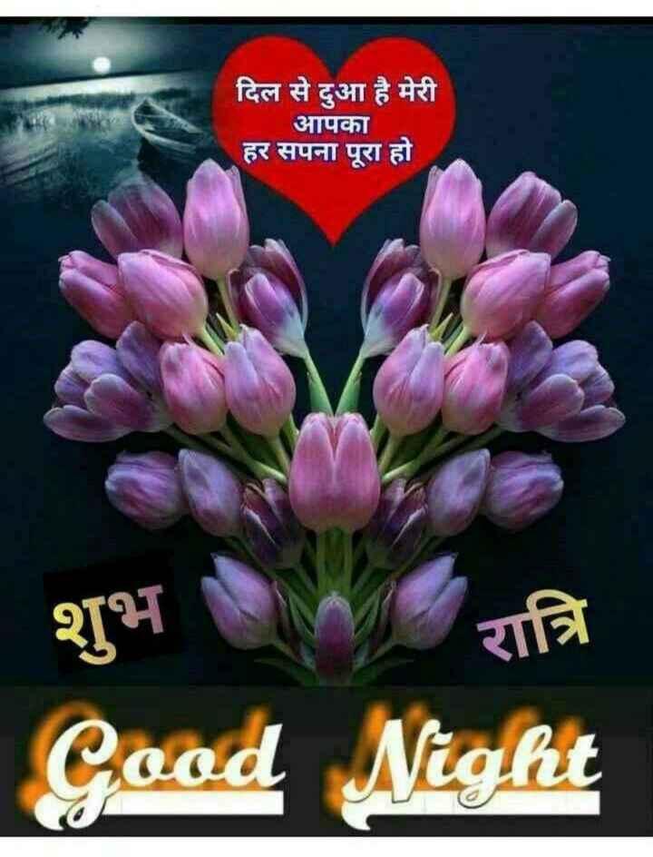 😁 Share a Smile - दिल से दुआ है मेरी आपका हर सपना पूरा हो शुभ रात्रि Good Night - ShareChat
