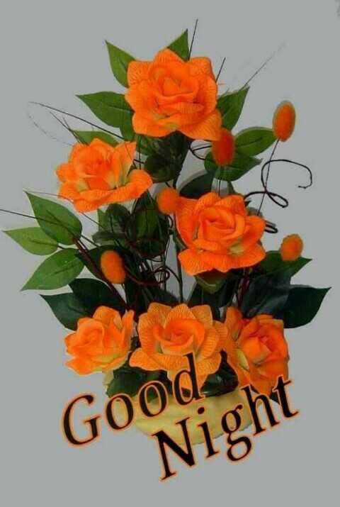 Subh ratri - Goods Night - ShareChat