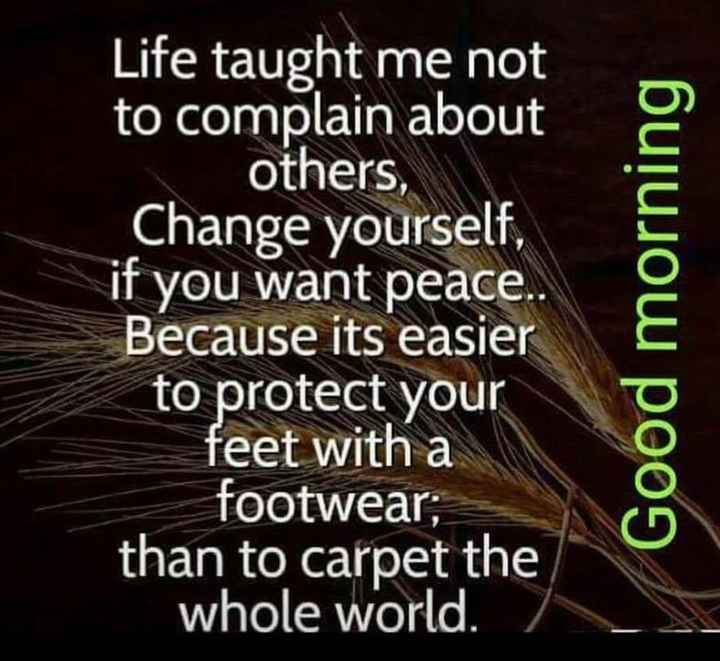 Sunday Thoughts - Life taught me not to complain about others , Change yourself , if you want peace . . Because its easier to protect your feet with a footwear ; than to carpet the whole world . þuļujow poog - ShareChat