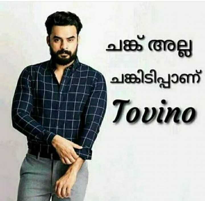 🎥 Tovino Fans - ചങ്ക് അല്ല ചങ്കിടിപ്പാണ് Tovino - ShareChat