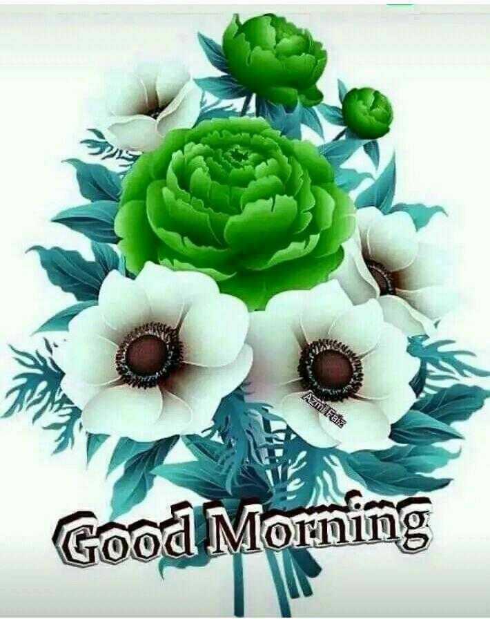 🎥WhatsApp वीडियो - Azmi Faiz Good Morning - ShareChat