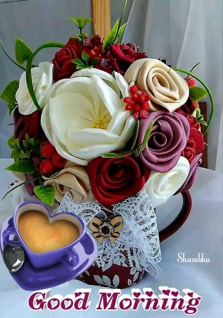 🎥WhatsApp वीडियो - Shambhu Good Morning - ShareChat