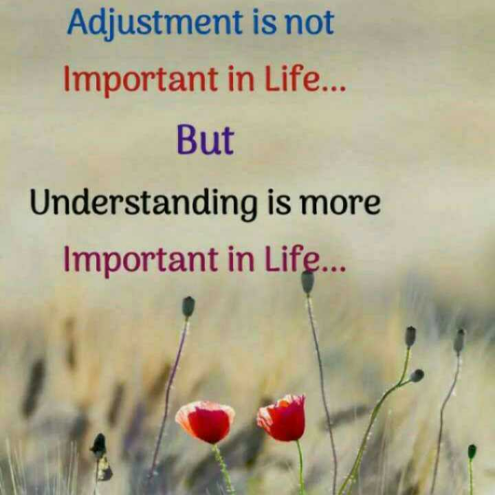 📜 Whatsapp स्टेटस - Adjustment is not Important in Life . . . But Understanding is more Important in Life . . . - ShareChat