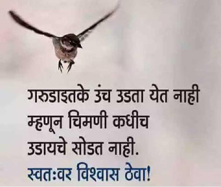 🎭Whatsapp status - गरुडाइतके उंच उडता येत नाही म्हणून चिमणी कधीच उडायचे सोडत नाही . स्वतःवर विश्वास ठेवा ! - ShareChat