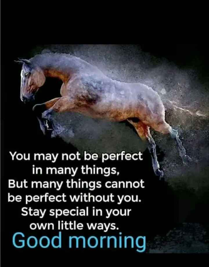 🎭Whatsapp status - You may not be perfect in many things , But many things cannot be perfect without you . Stay special in your own little ways . Good morning - ShareChat