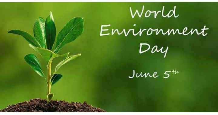 World Environment Day - World Environment Day June 5th - ShareChat