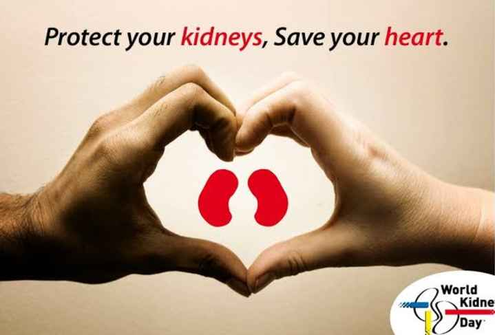 World Kidney Day - Protect your kidneys , Save your heart . World Kidne Day - ShareChat