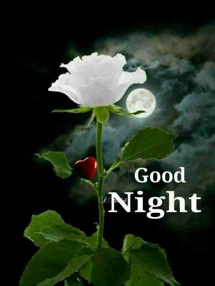 World Sleep Day - Good Night - ShareChat