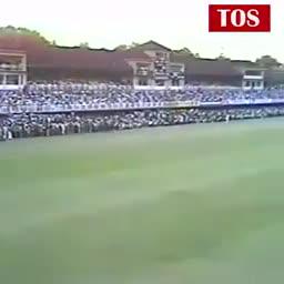 શેરચેટ ક્રિકેટ એક્સપર્ટ - TOS TOS US VERS 186 - 3 331 AUSTRALIA BEAT NEW ZEALAND BY 7 WICKETS - ShareChat