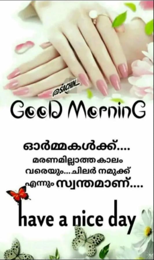 🌞 ഗുഡ് മോണിംഗ് - ര Good Morning ഓർമ്മകൾക്ക് . . . . മരണമില്ലാത്ത കാലം വരെയും . . . ചിലർ നമുക്ക് എന്നും സ്വന്തമാണ് . . . . have a nice day - ShareChat