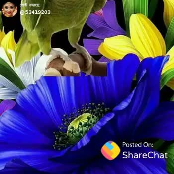 📚উপদেশ - @ 53419203 Posted On : ShareChat Good Morning . . . Posted Crie Share Chat TOSES - ShareChat