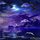 good night - Good Night , Sweet Dreams Blingee - ShareChat