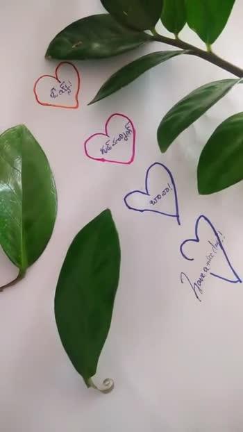 🌅శుభోదయం - గుడ్ మార్నింగ్ బావా - Have a nice day - గుడ్ మారిన్ - బావా ! Have a nice day - - ShareChat