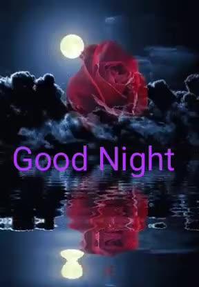 😴శుభరాత్రి - Good Night Good Night - ShareChat