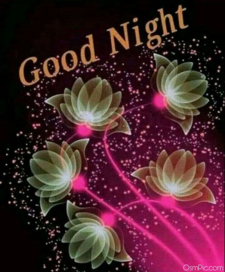😴शुभ रात्री😴 - Good Night Osmpic . com - ShareChat