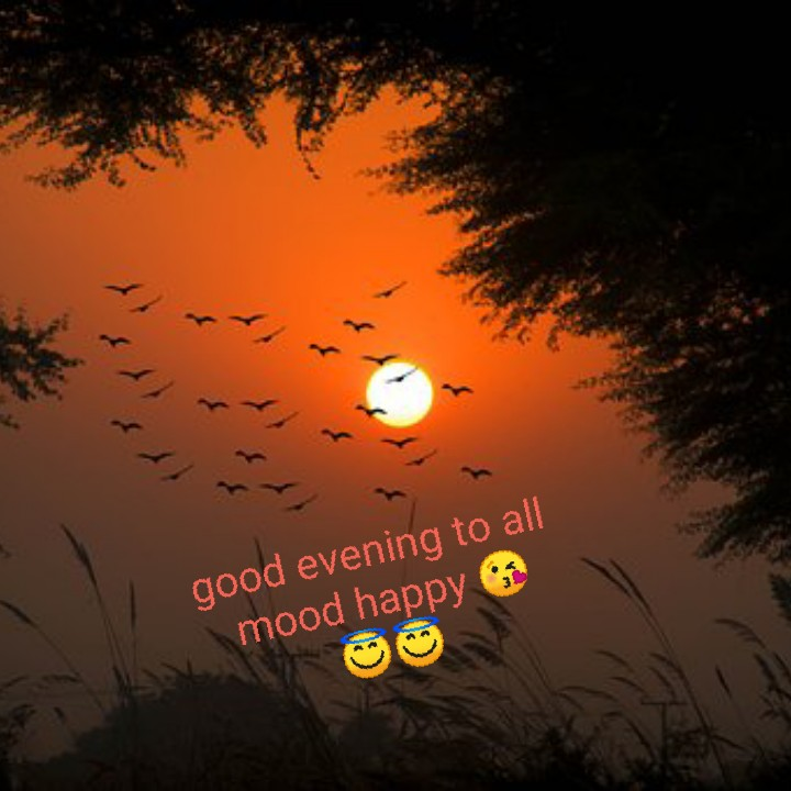 😎good evening😎 - good evening to all mood happy - ShareChat