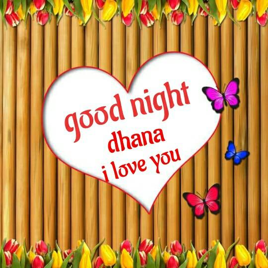 IPL ବିଡ଼ିଓ - good night dhana i love you - ShareChat
