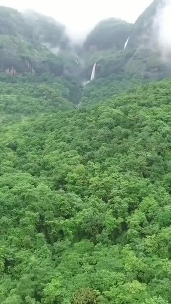 🌳 વન મહોત્સવ 🌳 - Diodles Now Streaming on - ShareChat