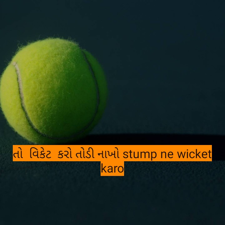 💙 RR vs KXIP 💗 - તો વિકેટ કરો તોડી નાખો stump ne wicket ! karo - ShareChat