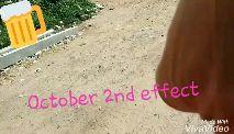 october 2 - WINES I SALOURCA WINES సాయి మధ్య మైన్స్ - October 2re effect de w VivaVidea A October 2nd Made With - VivaVideo - ShareChat