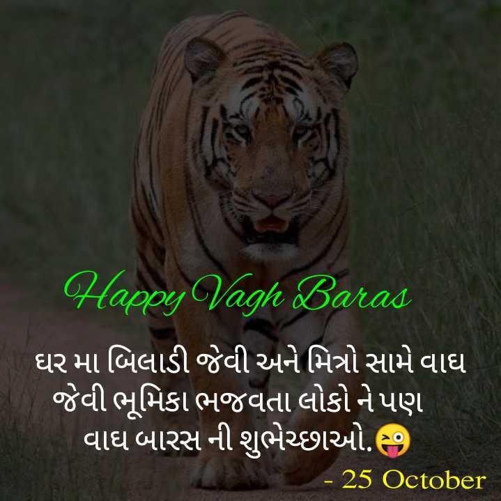 advance dhamaka - Happy Vagh Baras ' ઘર મા બિલાડી જેવી અને મિત્રો સામે વાઘ ' જેવી ભૂમિકા ભજવતા લોકો ને પણ ' વાઘ બારસ ની શુભેચ્છાઓ . - 25 October - ShareChat