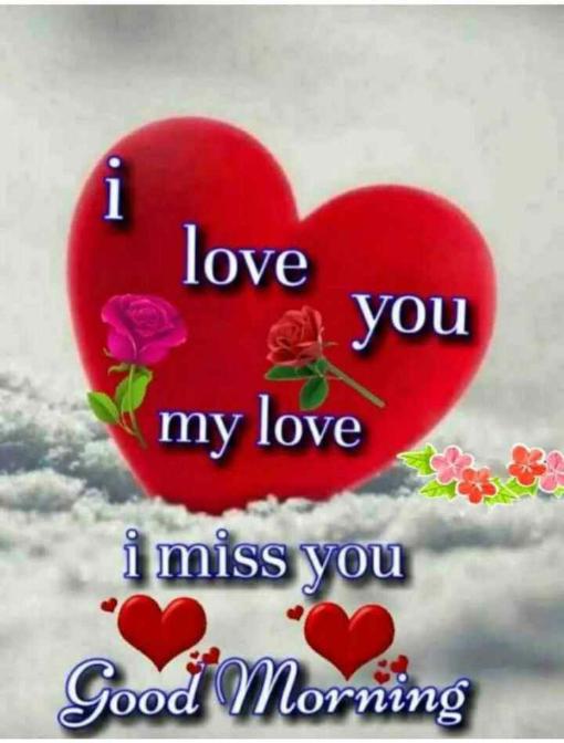 🎶 रोमांटिक गाने - love g you my love i miss you Good Morning - ShareChat