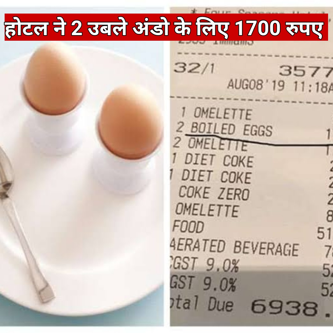 अंडे - GICA 2344 3ist to fas 1700 3545 32 / 1 3577 AUGO8 19 11 : 18A 1 OMELETTE 2 BOILED EGGS 2 OMELETTE 1 DIET COKE 1 DIET COKE COKE ZERO OMELETTE FOOD AERATED BEVERAGE GST 9 . 0 % GST 9 . 0 % otal Due 6938 . - ShareChat