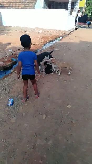 dog lovers - ShareChat