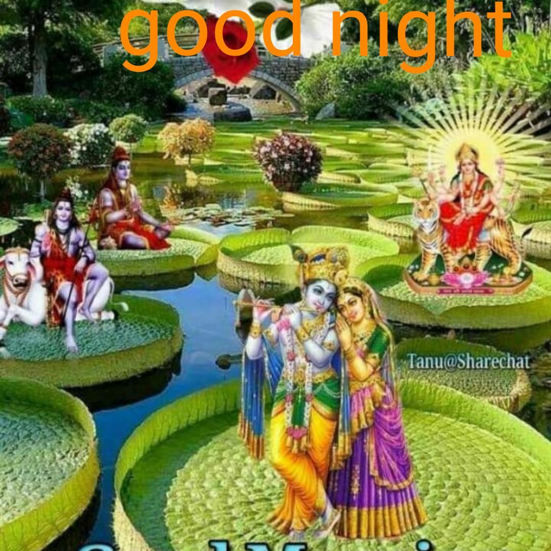 all friends - Joonight Tanu @ Sharechat - ShareChat