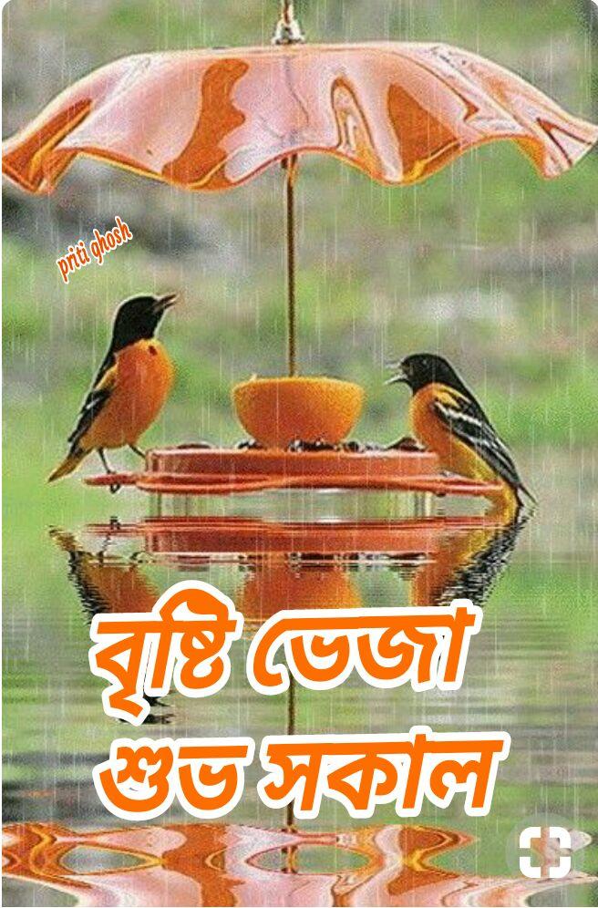 সুপ্রভাত 🌞 - ShareChat