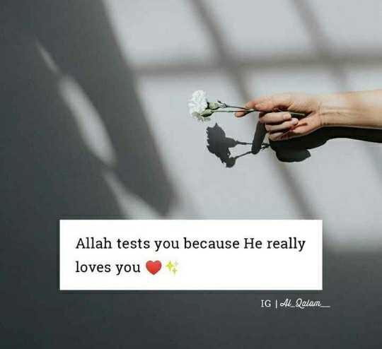 allah ❤️ - Allah tests you because He really loves you IGAL _ Qalam - ShareChat