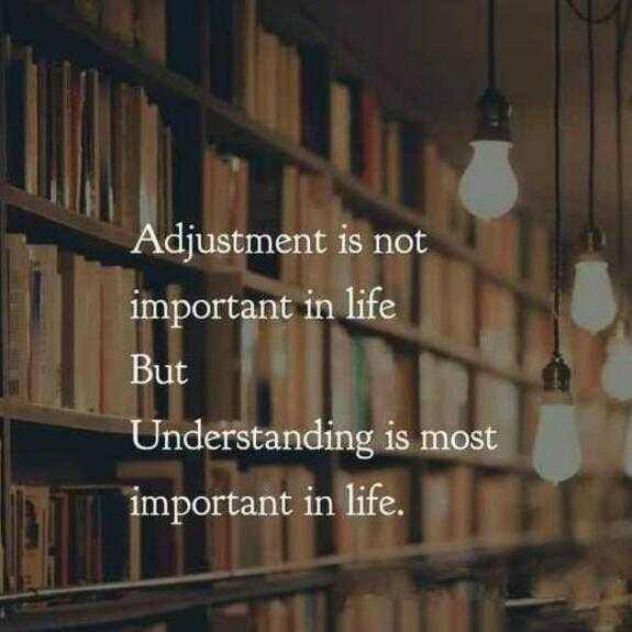 alone😐 - Adjustment is not important in life But Understanding is most important in life . - ShareChat