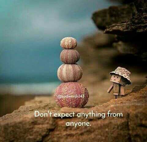 alone - Don ' t expect anything from anyone . - ShareChat