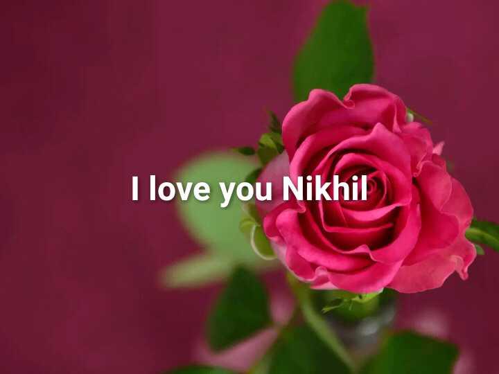 😍 awww... 🥰😘❤️ - I love you Nikhil - ShareChat
