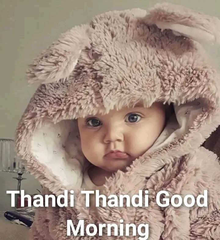 😍 awww... 🥰😘❤️ - Thandi Thandi Good Morning - ShareChat