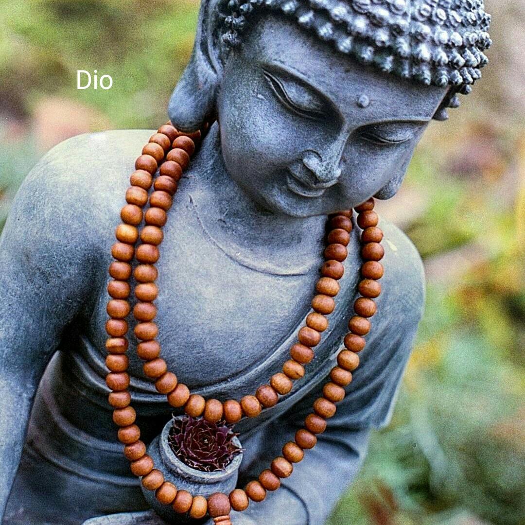 buddha words - Dio - ShareChat