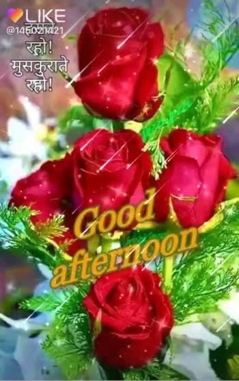 good afternoon.... - LIKE @ 145221 रहो ! मुसकुराते रहो ! Good i afternoon हसते रहो । मुसकुराते रहो ! Good aternoon @ 145021421 - ShareChat