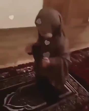 cute baby - O MUSLIM . MEDIA O MUSLIM . MEDIA - ShareChat