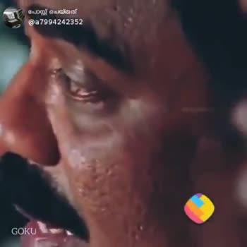 ജെല്ലി സ്ലൈസ് - ShareChat
