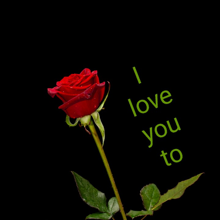 me and my love - love you to - ShareChat