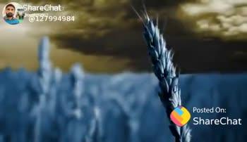 💖 ਦਿਲ ਦੇ ਜਜਬਾਤ - Sपियो @ 1994984 2t ShareChat Sidhu Kuljeet 127994984 ਉੱਚੀ ਸੋਚ ਦਿਲ * ਦੇ ਆਜ਼ਾਦ : * ਬੱਲੀਏ ਸਾਡੇ ਲੋਕਾਂ ਨਾਲੋਂ ਵੱਖਰੇ ... Follow - ShareChat